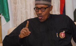 Buhari Vows to Secure Nigeria, Niger from Boko Haram Attacks