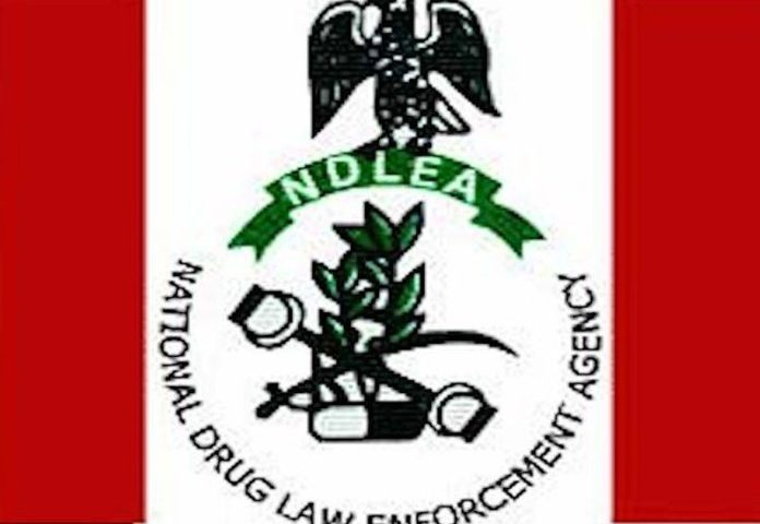 How NDLEA Uncovered 26.15 kilogrammes of heroin value N7bn at MMIA, Ikeja Lagos.