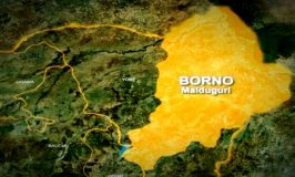 Boko Haram killed five soldiers, 25 others in Borno attacks – Sources