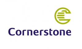 Cornerstone Insurance reports 47% profit decline