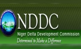 Group Battles Falsehood on Status of NDDC Board